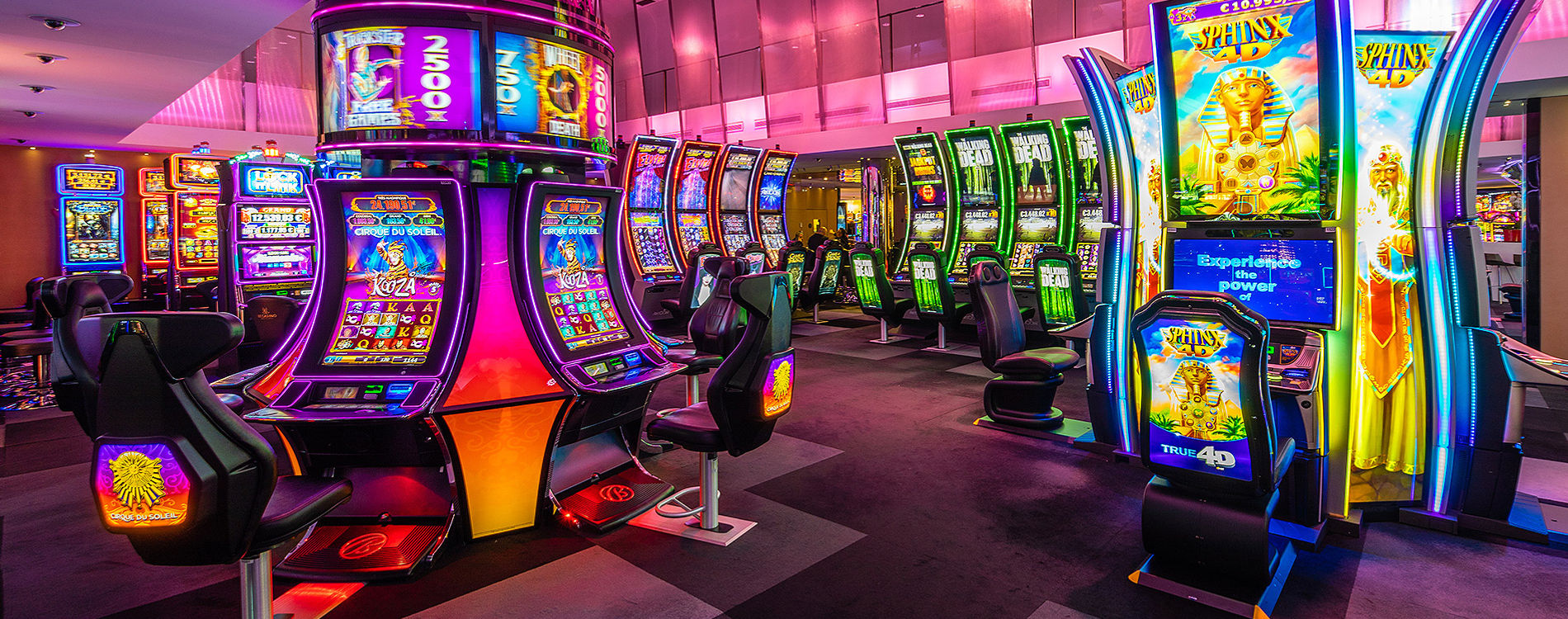 What are the Features and Types of the slots?